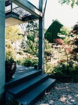 Stefanie Hering's backyard
