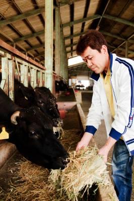 Omi beef farmer Yukio Kinoshita