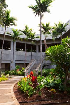 34. Honolulu Airport