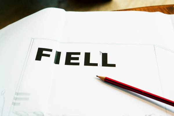 The Fiell brand identity