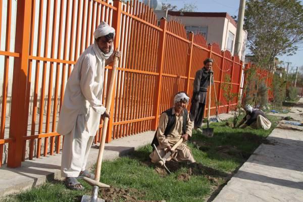 Greener Kabul