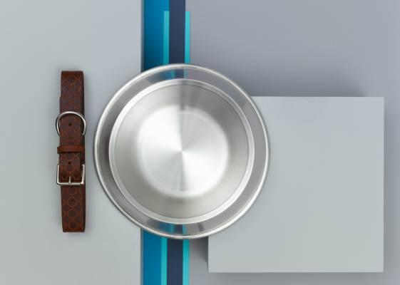 Bone and Rag/dog bowl and collar