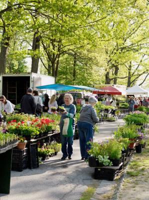 Portland farmer's market at Deering Oaks Park