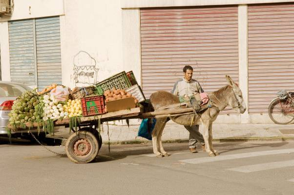 Fruit and vegetables seller, Triangle D'Or