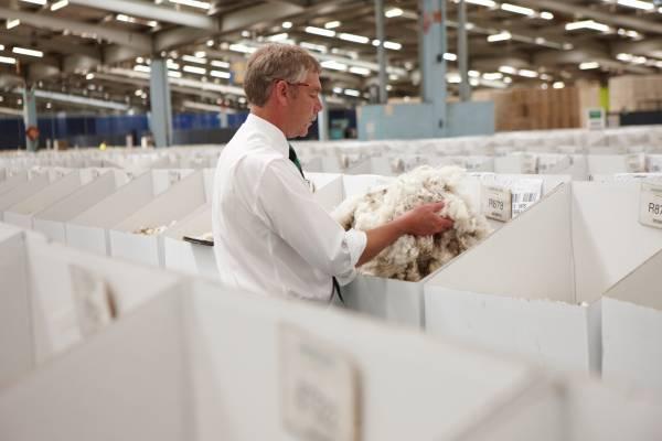 Wool broker Craig Lawson