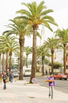 Rue d'Alger