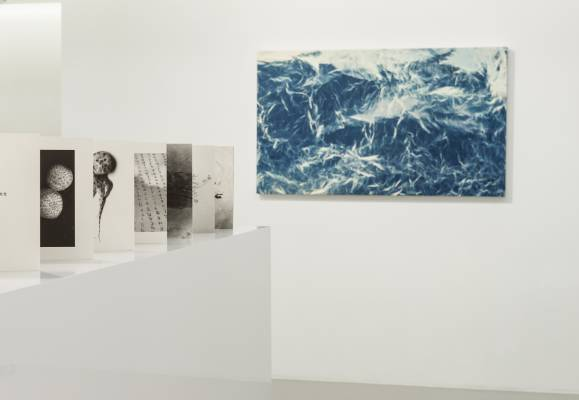 Hong Kong's Edouard Malingue gallery hosts Meeting Point – a dual solo exhibition of works by Charwei Tsai and Chi-Tsung Wu
