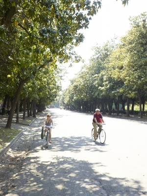 Cyclists in Villa Borghese