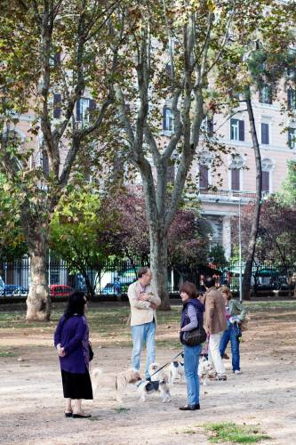 Dog-walkers in the park at Piazza Vittorio