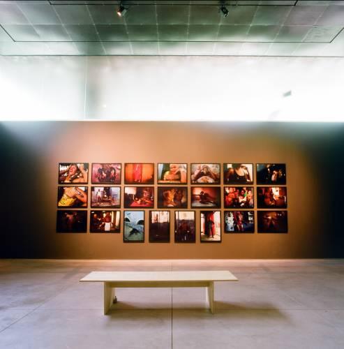 Gallery dedicated to Brazilian artist Miguel Rio Branco at Inhotim art centre
