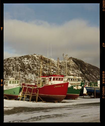 Fishing boats in St John's Harbour